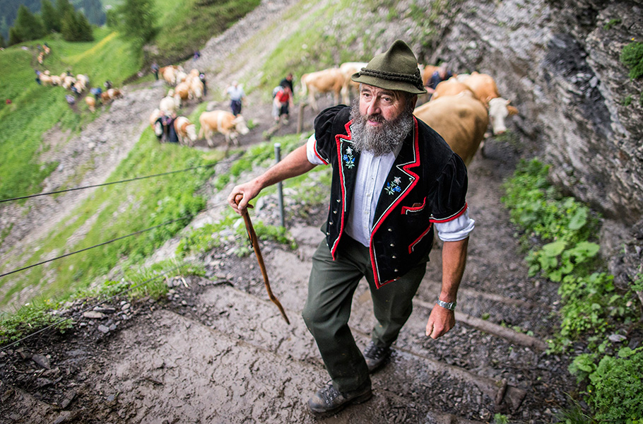 Alpaufzug Engstligenalp, Thomas Hodel