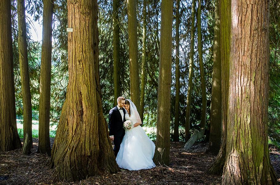 Hochzeitfotograf Thun, Thomas Hodel, Rückblick 2015
